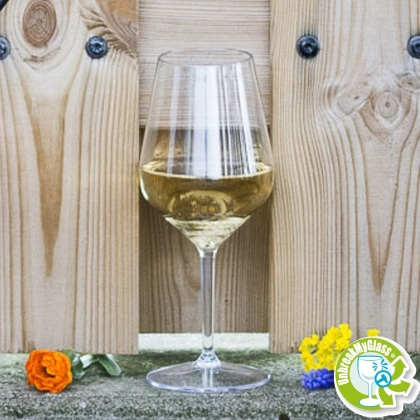 WINE GLASS 47CL CLEAR