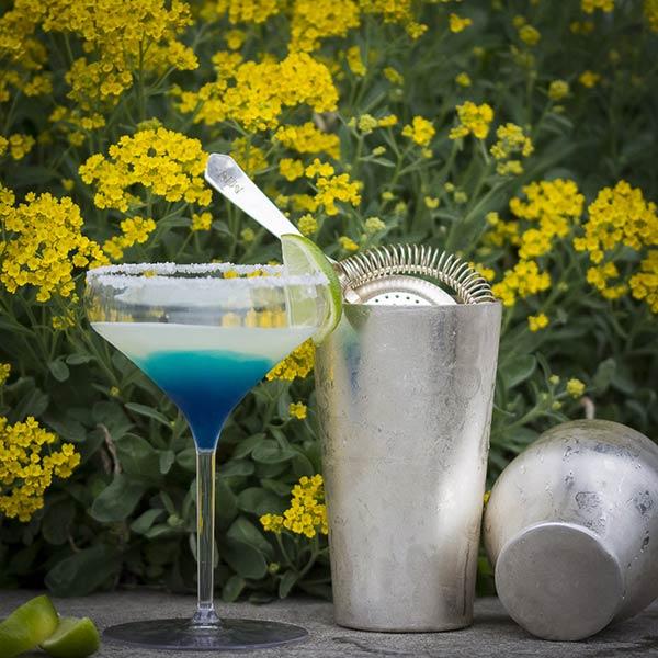 UnbreakMyGlass - Verres plastiques incassables - cocktail 40cl