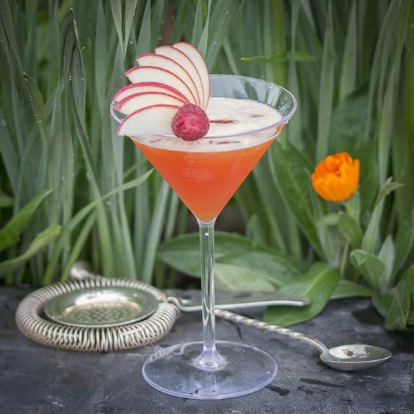 UnbreakMyGlass - Verres plastiques incassables - martini 25cl