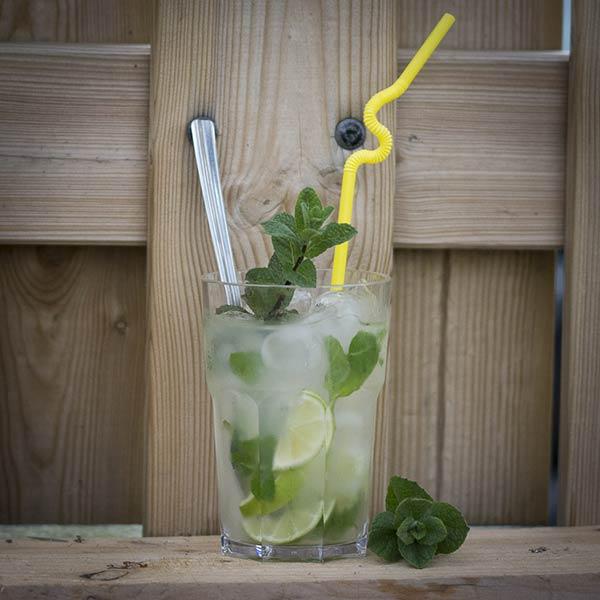 UnbreakMyGlass - Verres plastiques incassables - mojito 40cl cocktail