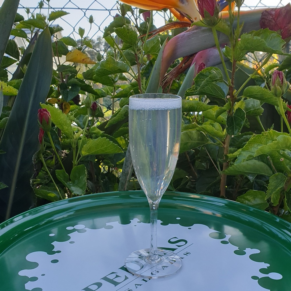 CHAMPAGNE FLUTE 12CL CLEAR